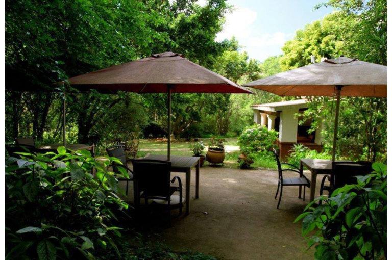 breakfast patio_b